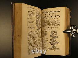 1680 HERBAL Medicine Pharmacology Bauhin Plants Botany Remedies Apothecary Opium