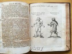 Schott Physica curiosa Monster Angel Demon 2 Vol. 57 Plates 1st. Edition 1662