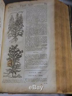 THE ENGLISH HERBAL 1710 History Plants Botany ANCIENT Antique WOODCUTS Salmon