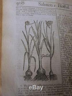 Anglais Herbes 1710 Histoire Plantes Botanique Antique Antique Woodcuts Salmon