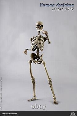 Coomodel Bs011 1/6 Le Corps En Métal De Squelette Humain Movable 12'' Figure Avec Le Cerveau